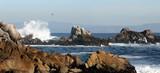 rocky beach panorama poster
