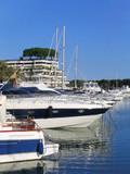 sailing boats and yachts poster