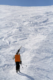 ski à pieds poster