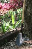 shovel in garden poster