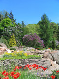 stone hill in botanical to a garden poster