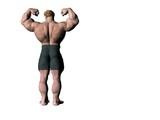 bodybuilder 15 poster