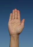 main levée poster