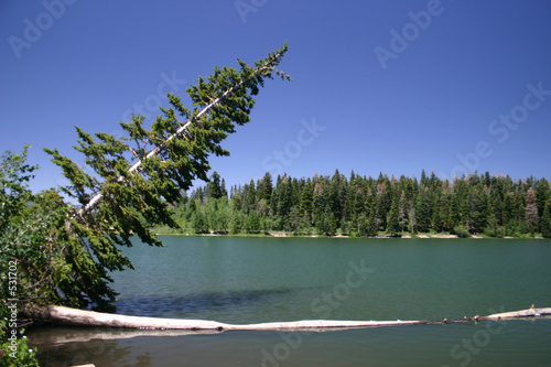 payson lake panorama #2