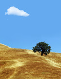 lonely cloud above california hills poster
