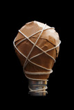 light bulb idea - wrapped