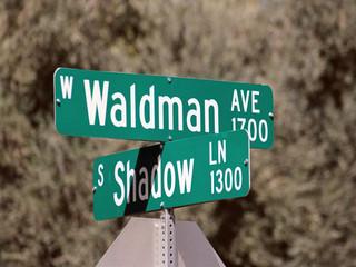 streetsign: waldman avenue & shadow lane