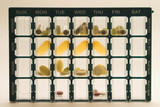 daily medicine dose organizer with backlight poster