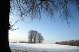 winter in denmark poster