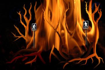 pedestrian sign and fire