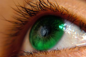 eye 3b