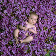 baby in the flowers
