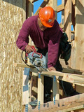 carpenter working, saw, roof, hardhat poster