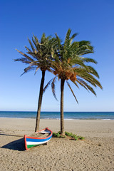 colourful rowing boat and palm trees on beach