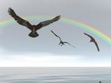 rainbow eagles poster