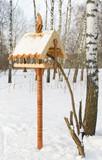 feeding trough for birds poster