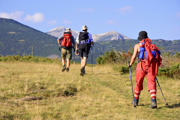 people trekking in the mountain