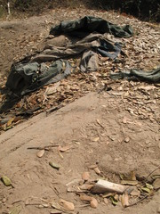 body parts of khmer rouge victims emerge from mass