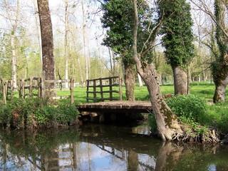 pont dans le marais