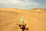 solitude dans le desert poster