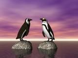 penguin conversation poster