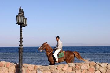 cavalier sur fond de mer à dahab