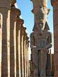 pharaoh watches over luxor temple, egypt
