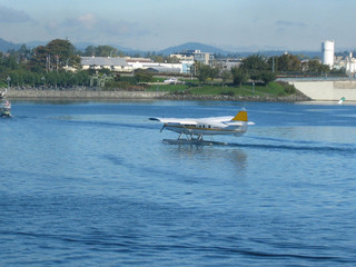 float plane landing in harbor