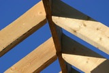 roof beams poster