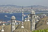 turkish view on bosporus. poster
