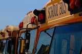 row of yellow school buses poster