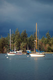 sailboats on a stormy day poster