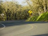 dangerous curves - roadway poster