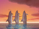 three dancing dolphins poster