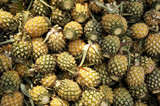 thailand: very smal, tasty and sweet pineapples poster