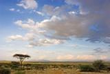 Fototapety african landscape
