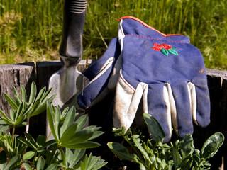 gardeners gloves and hand shovel