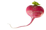heart made of radish poster