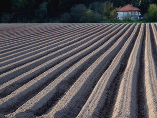 landwirtschft