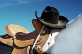 hat and saddle poster