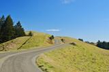 winding road on mount tamapalais poster