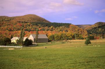 rural farm in autumn