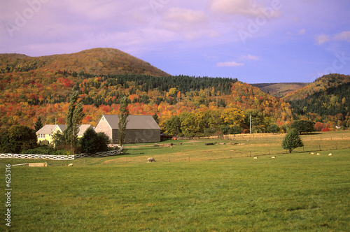 rural farm in autumn