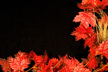autumn border ii