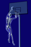 basketball anatomy poster