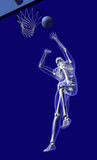 basketball anatomy - from below poster