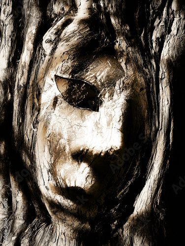 face in tree bark