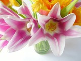 bouquet of pink tulips poster