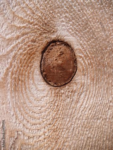knot hole