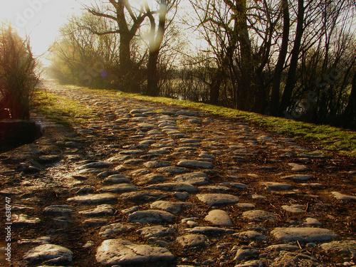 mahic path © .shock